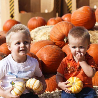 pumpkinkids copy