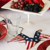Americana Dinner Party