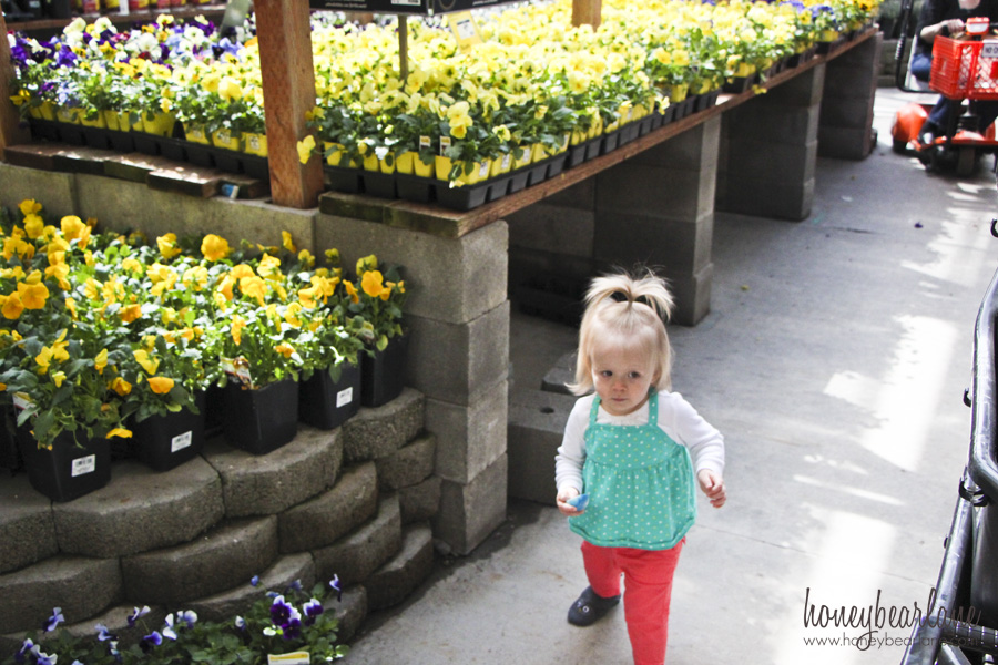 flower shopping at home depot