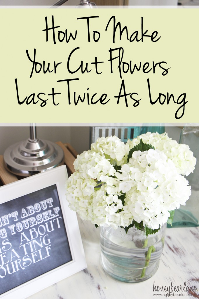 how to make your cut flowers last twice as long