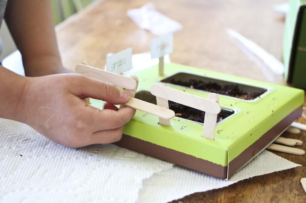 kiwi crate_2