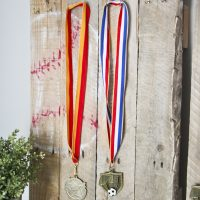 Pallet Sports Medal Display