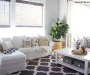 Caring for a Fiddle Leaf Fig